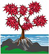 Japanese Maple Tree Logo Copyright Pacific Coast Maples